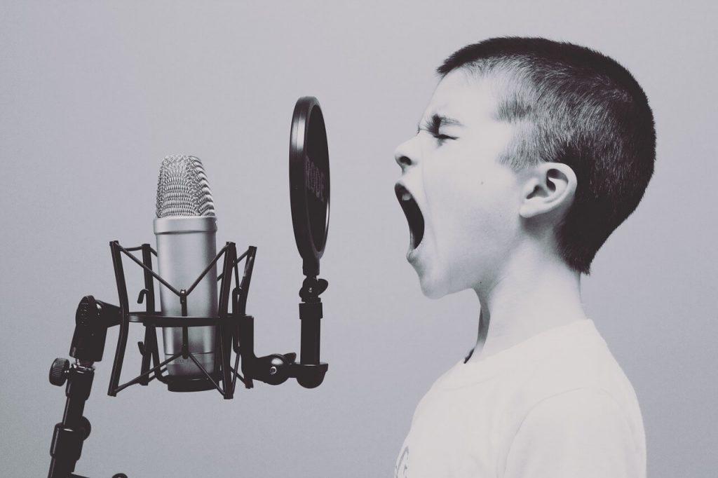 comprar micro para voz